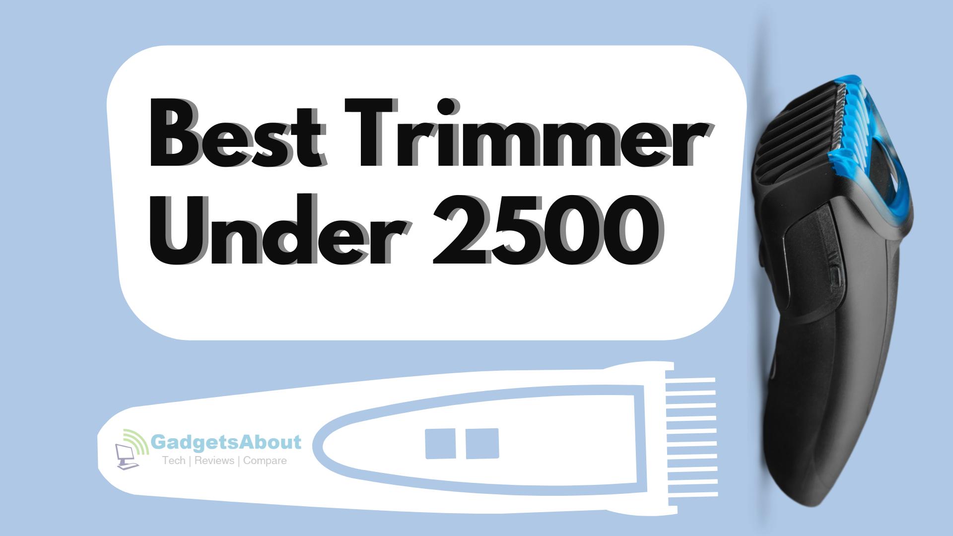 Best Trimmer under 2500